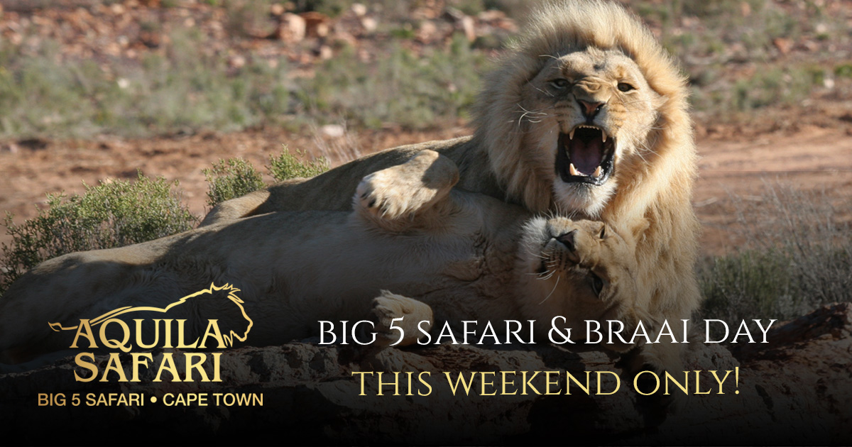 GET OUT OF THE HOUSE! WEEKEND BIG 5 SAFARI & BRAAI DAY PASS